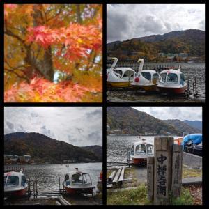 昨日と今日と、10月に行った栃木日光紅葉の旅の⑦です♪