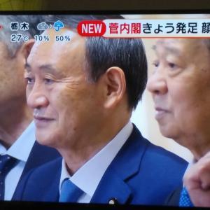 菅新内閣へ、&8月最後の日曜日のプチ箱根旅行③♪