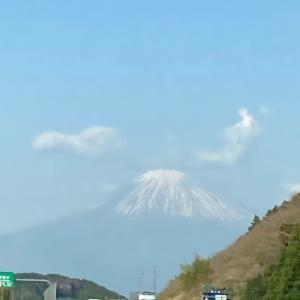 本物の富士山だぁ