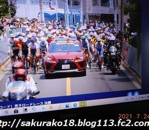 244㌔ オリンピック 自転車個人ロードレース決勝