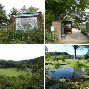 久しぶりに行った自然溢れる『泉ボタニカルガーデン』
