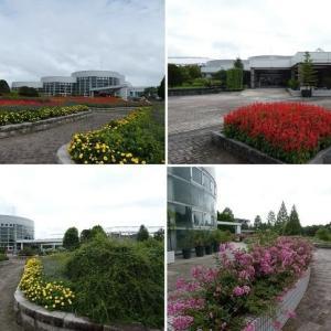 七北田公園の花壇を見学