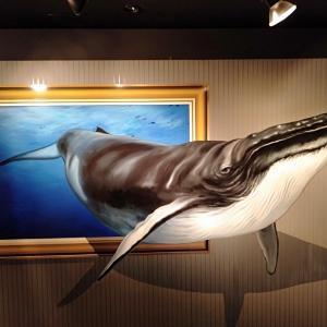 高尾山トリックアート美術館。