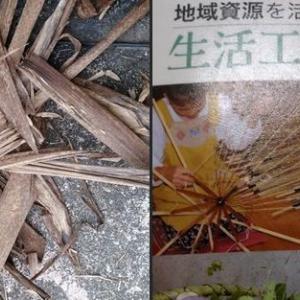【ハーブ】竹の皮