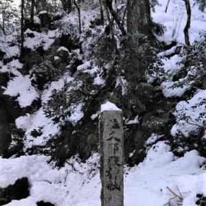 神秘的な初詣~大雪のなかで~