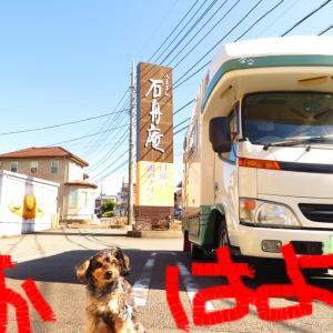 2020 桜旅 伊豆その7