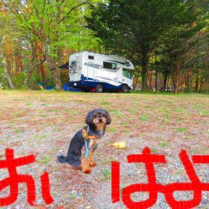 キャンプだホイ‼️ その2