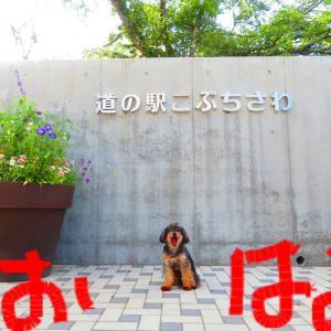 夏休み^_^ その2
