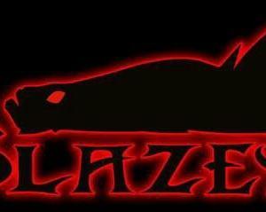 【新ブランド】 BLAZEYE(ブレイズアイ)設立 【ヒデ林】