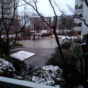 <雪かき無し!>