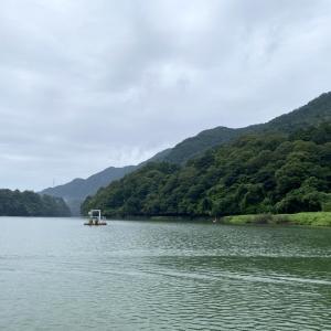 【津久井湖】嬉しいことと悲しいこと
