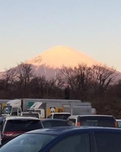 そうだっ!京都へ行こう。