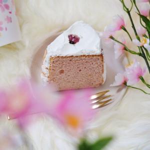 桜の開花とともにスターバックスから毎年人気の「さくらシフォンケーキ」が登場!