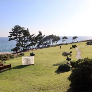【済州島】まるでカリフォルニアだった中文リゾート