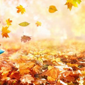 秋から運命を分ける「意識する習慣」