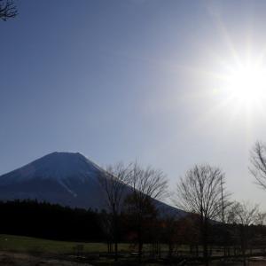 続 富士山詣で (富士五湖 ( 山中湖を除く ) から雲見温泉へ )
