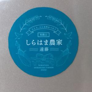 クオリティソフト株式会社 で行われた「 和歌山しらはま農家遠藤 」 さん家のレタスの販売