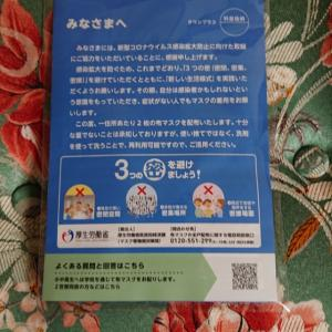 6月13日は 「 マスク記念日 」 ( 頼らず 自分のことは自分でしようと決意 )