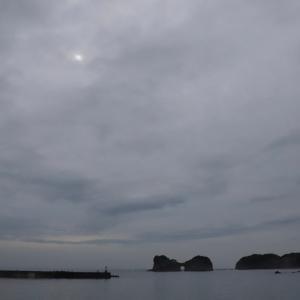 ため息の一枚 ( 部分日食 )  ( 沖縄の三大名花 )