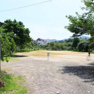 みなべ町の鎌田池公園のハス、アーモンドの木、カシクルミの木、その他いろいろ