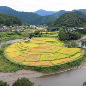 有田川町の 「 あらぎ島 」 と その周辺の観光