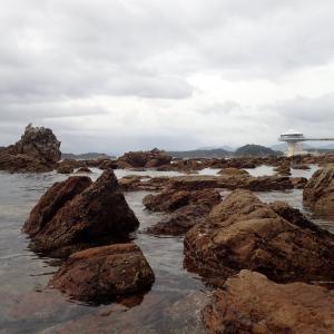 海中展望塔の近くの海での 今年初めてのシュノーケリング