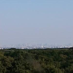 野山北公園から六道山展望台へ。
