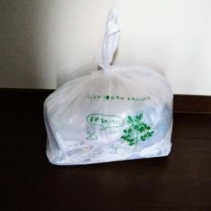 収納庫~死蔵品の整理~