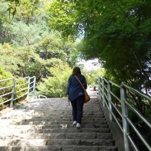 富士山に行こう♪新倉山浅間公園~富士スバルライン五合目