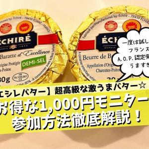 【エシレバター】たった1,000円で試せる方法を徹底解説!【モニター募集最新版】