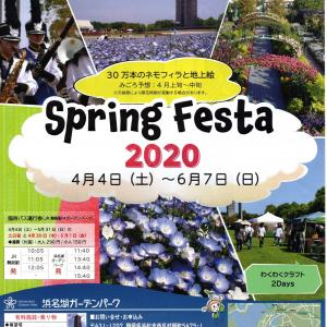 Spring Festa 2020