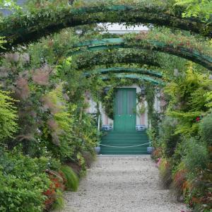 9月13日の花の美術館花の庭より
