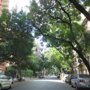 「ブエノスアイレスの家CASA DE BUENOS AIRES」パレルモ地区で住むように滞在してみませんか。