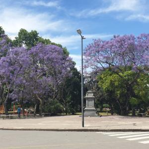 12月半ばからアルゼンチン観光事始め、まずはブラジル、チリ、ボルビア、パラグアイ、ウルグアイ在住者のみ条件付き受け入れ