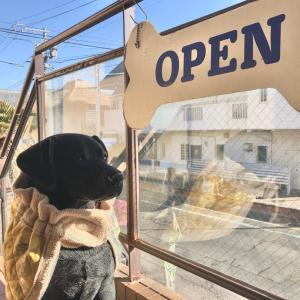 ドッグカフェのラリーズカンパニーはこんなお店