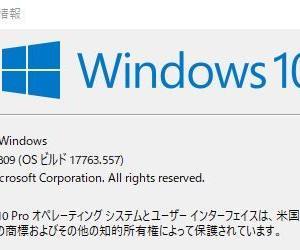 【WindowsUpdate】2019年6月分アップデート ビルド17763.557
