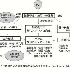 3:微小粒子状物質(PM2.5)の健康影響について