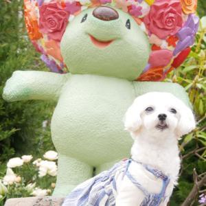 ガーデンネックレス横浜〜里山ガーデン〜