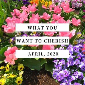 2020年4月の「大切にしたいこと」は「今出来る事を出来る範囲で」【思い】