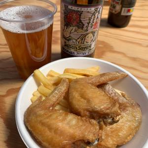 「みしま未来研究所」のイベントで、クラフトビールと戸田塩だっ手羽を野外で堪能!【GW2019日記】
