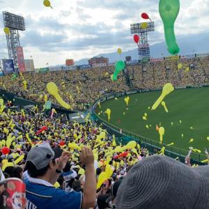 甲子園でファイターズの勝利に喜び、虎勝でディープな夜を堪能した関西旅行初日【旅】