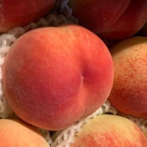 山梨南アルプスにある「金丸文化農園」から冷凍さくらんぼと桃が届きました!今が旬のフルーツを堪能中【フルーツ】