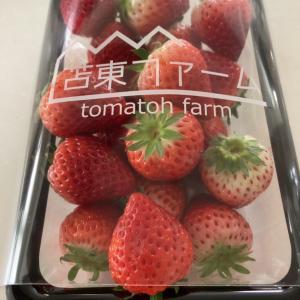 生産者さんに感謝〜産直・送料無料・1月28日まで!