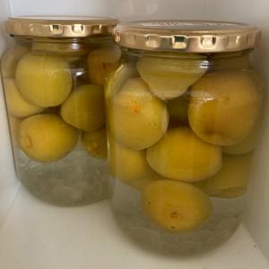 これがこんなに美味しいなら、自家製レモンサワーはきっと究極の美味しさ!