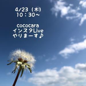 """""""4/23(木)AM10:30~ cococara インスタLive やります♪"""""""