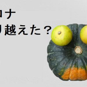 #スープジャーの季節 #かぼちゃと #商売と #水筒カバー屋