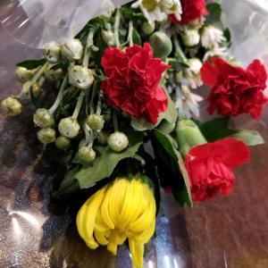 お花ありがとうございます。