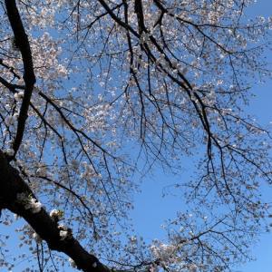【再開予定日変更のお知らせ】4/2→→→4/16