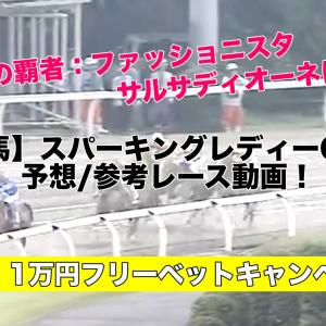 【川崎競馬】スパーキングレディーカップ2020予想・参考レース動画!ファッショニスタ,サルサディオーネは…!?