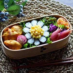 8/7 ハナの日の花金弁当と前回のお弁当詰め方動画♪